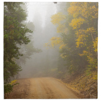 Cruising Into Autumn Fog Napkin