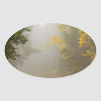 Cruising Into Autumn Fog Oval Sticker
