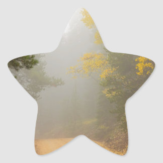 Cruising Into Autumn Fog Star Sticker