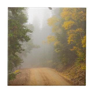 Cruising Into Autumn Fog Tile