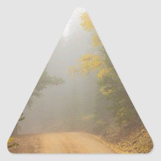 Cruising Into Autumn Fog Triangle Sticker