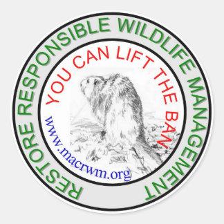 CRWM Lift the BAN! Classic Round Sticker