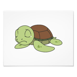 Crying Cute Baby Turtle Tortoise Greeting Card Photograph
