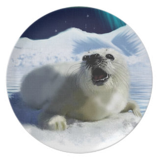 Crying Harp Seal & Aurora Nature-lover's Plate