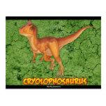 Cryolophosaurus postcard set
