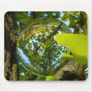 Crystal Ball in Gingko tree Mouse Pad