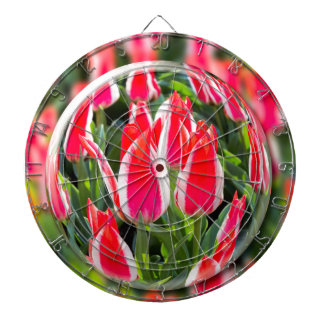 Crystal ball with red-white tulips in field dartboards