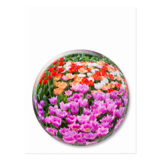 Crystal ball with various colored tulips on white postcard