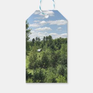 Crystal Falls, MI Gift Tag