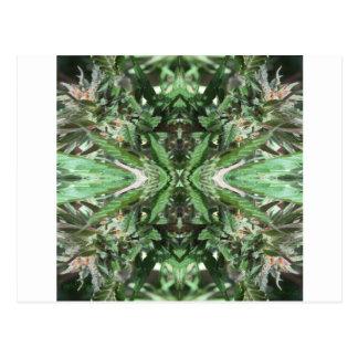Crystal Flames 3 Postcard
