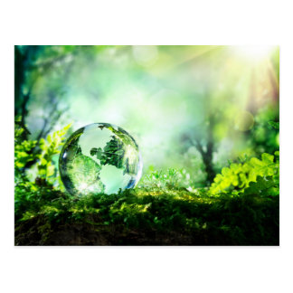 Crystal globe in a green forest postcard