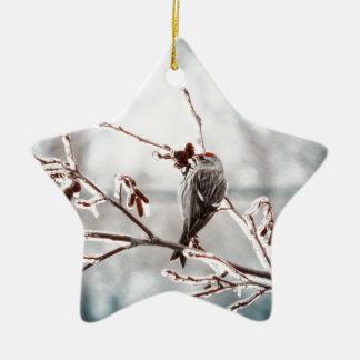 Crystal Morning Joy Ceramic Star Ornament
