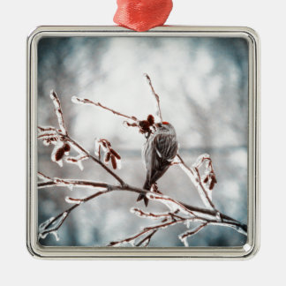 Crystal Morning Joy Silver-Colored Square Ornament