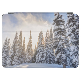 Crystal Mountain Ski Resort, near Mt. Rainier 1 iPad Air Cover