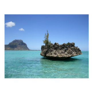 Crystal rock composed of coral postcard