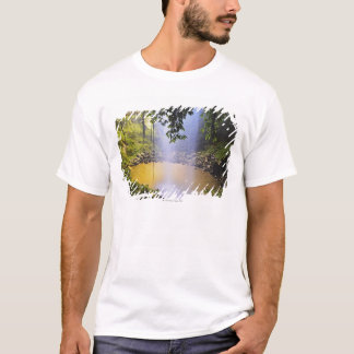 Crystal Shower Falls, Dorrigo National Park T-Shirt