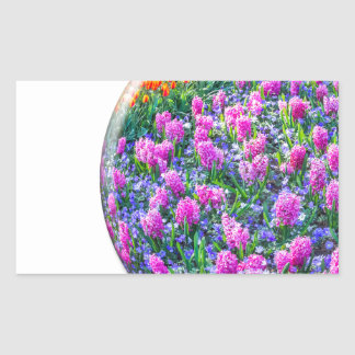 Crystal sphere with pink hyacinths on white