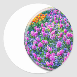 Crystal sphere with pink hyacinths on white round sticker