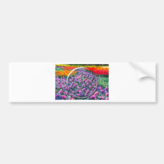 Crystall ball with pink hyacinths and flowers bumper sticker
