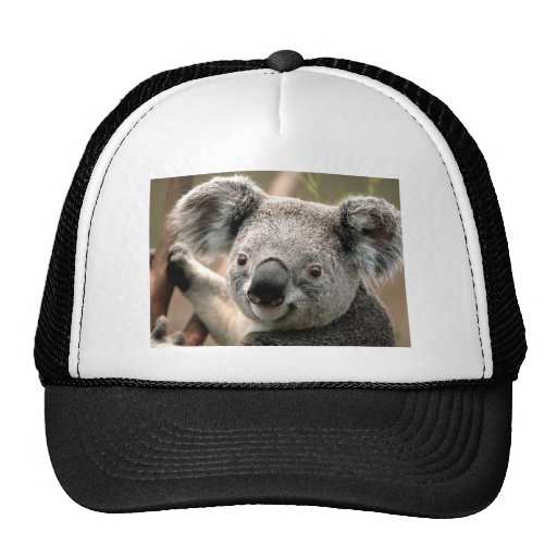 CS TEST MESH HAT