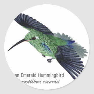 Cuban Emerald Hummingbird with Name Classic Round Sticker