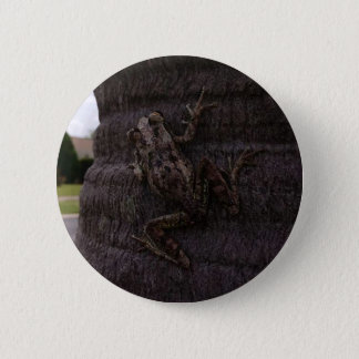 Cuban tree frog on a tree 2 inch round button