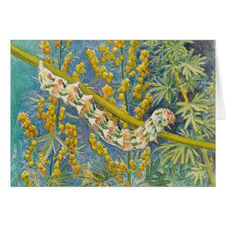 Cucullia Absinthii Caterpillar Card