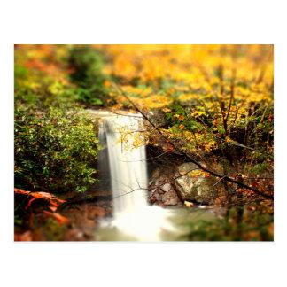 Cucumber Falls Fall Colors Postcard