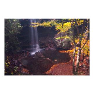 Cucumber Falls, Ohiopyle State Park, Pennsylvania Art Photo