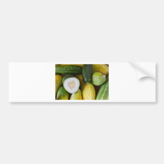 Cucumber Seeds Bumper Sticker