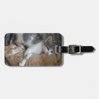 Cuddle Kitties Luggage Tag