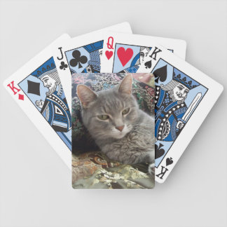 Cuddles Gray Cat Playing Cards
