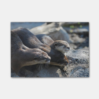 Cuddling Otters Post-it Notes