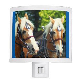 culpeper va draft horse show night light