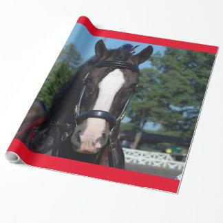 Culpeper, Virginia Draft Horse and Mule Show