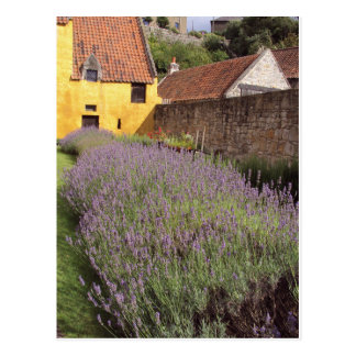 Culross Palace - The Front Garden Postcard