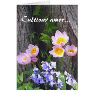 Cultivar Amor Card
