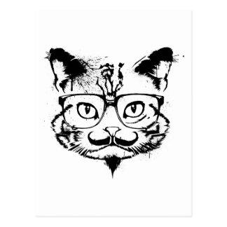 Culture Cat Postcard