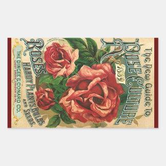 Culture rose des roses 1889 vintages d'héritage sticker rectangulaire