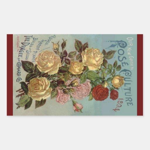 Culture rose des roses 1894 vintages d'héritage autocollant en rectangle