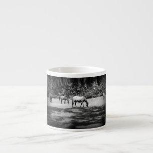 Cumberland in Black Espresso Cup