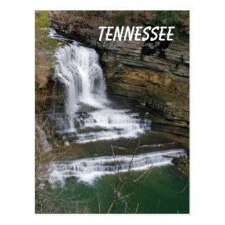 Cummins Waterfall Postcard