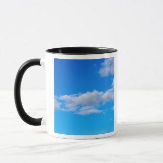cumulus clouds over the western Antarctic Mug