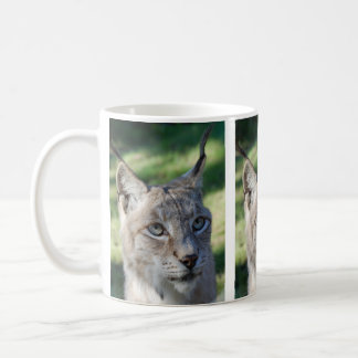 Cup/cup of BOBCAT LYNX LYNX by JL Glineur Coffee Mug