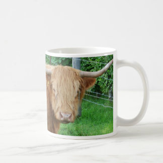 Cup Scottish highland cattle