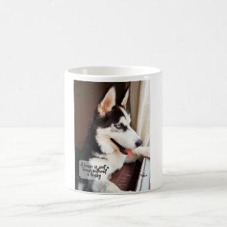 Cup Siberian Husky Cute