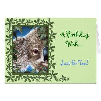 Curios Koala Birthday Card
