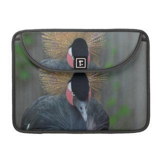 Curious African Crowned Crane MacBook Pro Sleeves