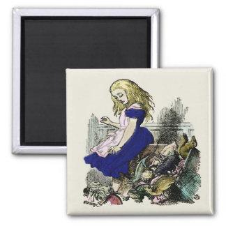 Curious Alice ~ Magnet Wonderland