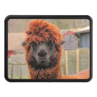 Curious Alpaca ~ Hitch cover